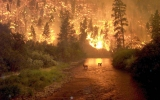 Wildfire Predictions for the Next Century
