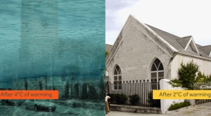 Sea Level Stakes for the Caribbean, in Pictures