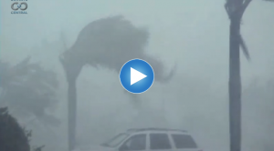 How Do We Know: Hunting Hurricanes