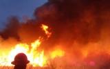 Wildfires 2011