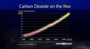 Carbon Dioxide on the Rise