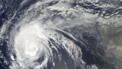 Hurricane Round-up 2010