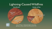 Lightning-Caused Wildfires