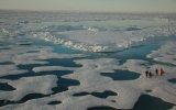 Sea Ice Still Declining, Despite Antarctica's Gains