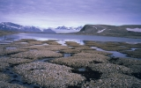 Thawing Permafrost Will 'Seep, Not Explode' CO2