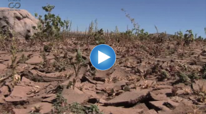 How Do We Know: Drought