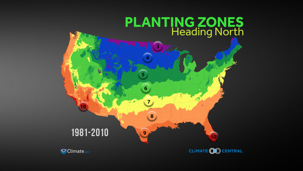 Planting Zones Map United States