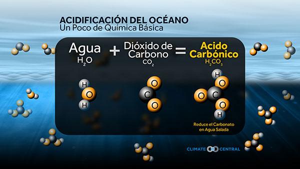 Acidificación