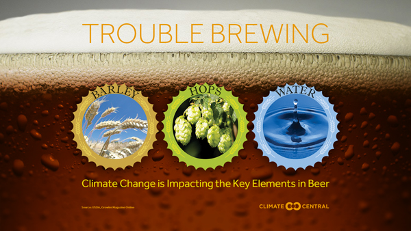 Climate Change and Beer