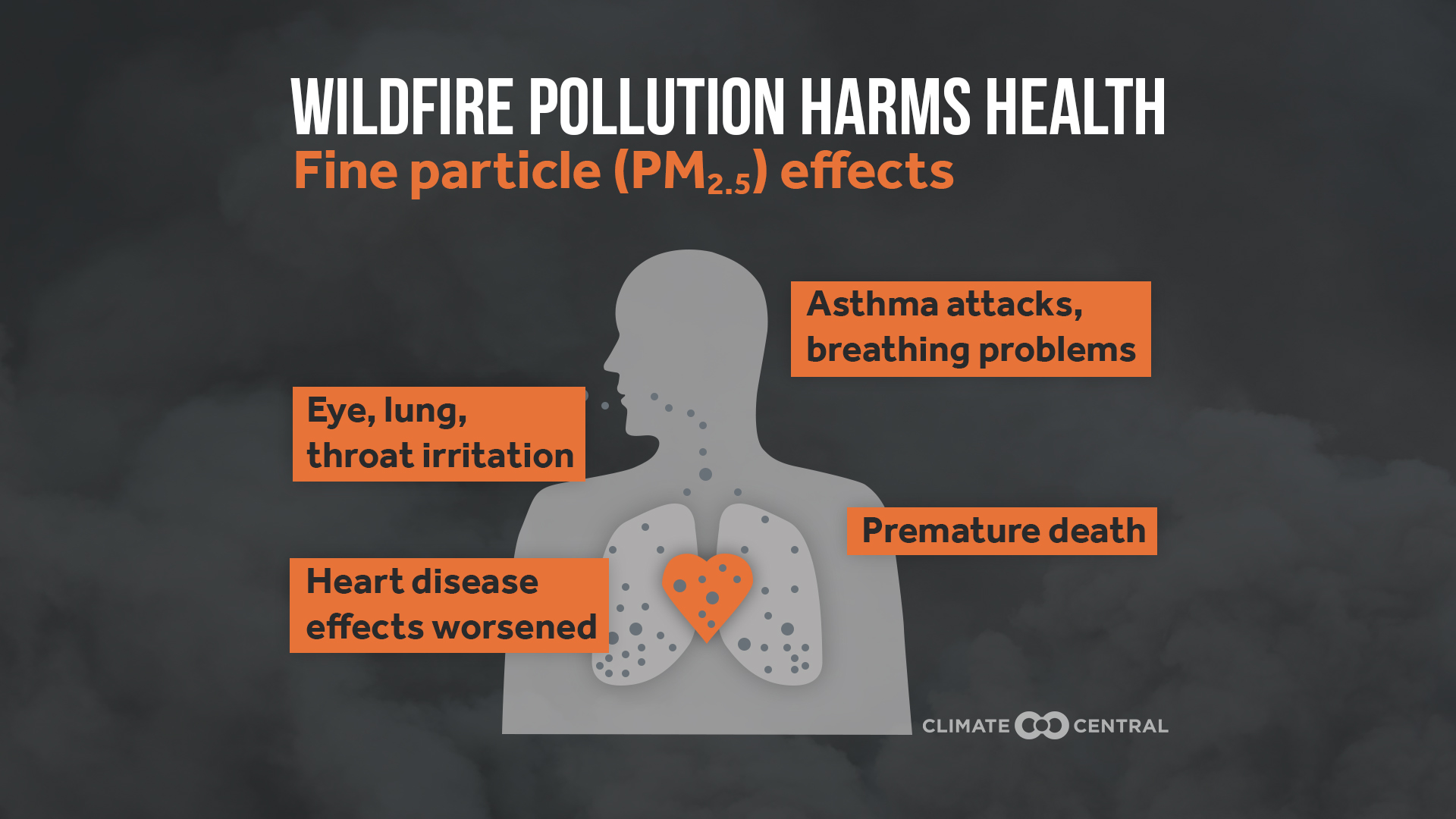 How Exposure to Pollution Harms Your Heart
