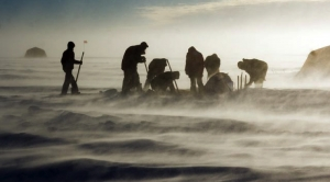 Post Shutdown, U.S. Tries to Salvage Antarctic Research