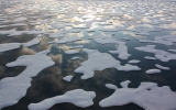 Warm Air Invades Arctic Again, Slowing Sea Ice Growth