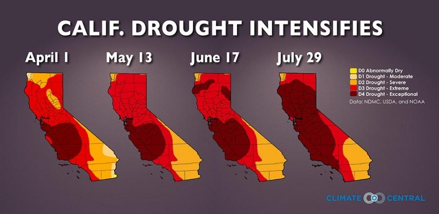 California Drought Intensifies
