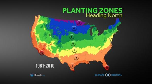 Planting Zones Heading North