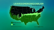 Leaves Emerging Earlier as Planet Warms