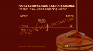 Maple Syrup Season and Climate Change