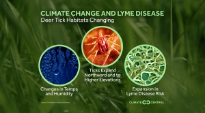Climate Change's Role in Tick Migration