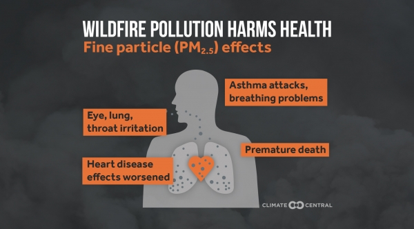 Here's How Wildfire Pollution Harms Health