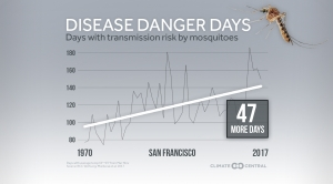 Mosquito Disease Danger Days