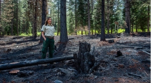Breathing Fire: Fighting fire with fire: Should California burn its forests to protect against catastrophe?