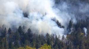 Breathing Fire: Change To Oregon Smoke Rules Seeing Early Results For Prescribed Burns