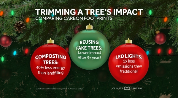 Tackling the Tree Debate
