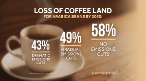 Loss of Coffee-Producing Land by 2050