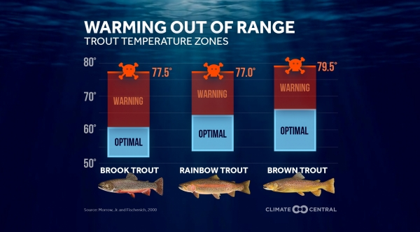 Optimal Temperature Ranges for Trout, Bass, and Salmon