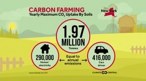Carbon Farming - Yearly Maximum C02 Uptake By Soils