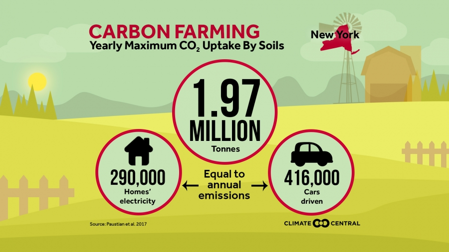 Carbon Farming - Yearly Maximum C02 Uptake By Soils