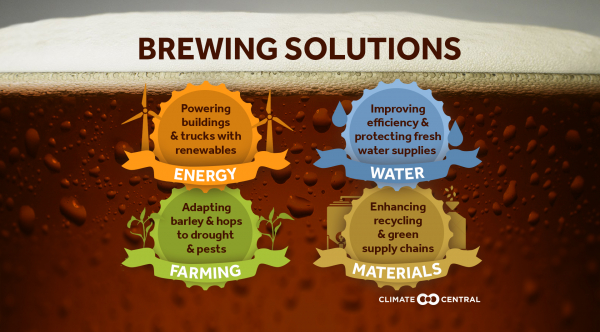 Sustainable Beer Infographic