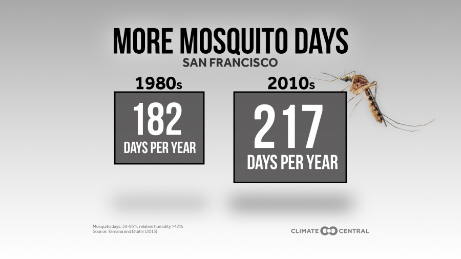 This News Bites: More Mosquito Days