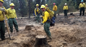 U.S. Forest Service Stretched After Record Wildfires Year