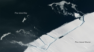 Antarctica Just Shed a Manhattan-Sized Chunk of Ice