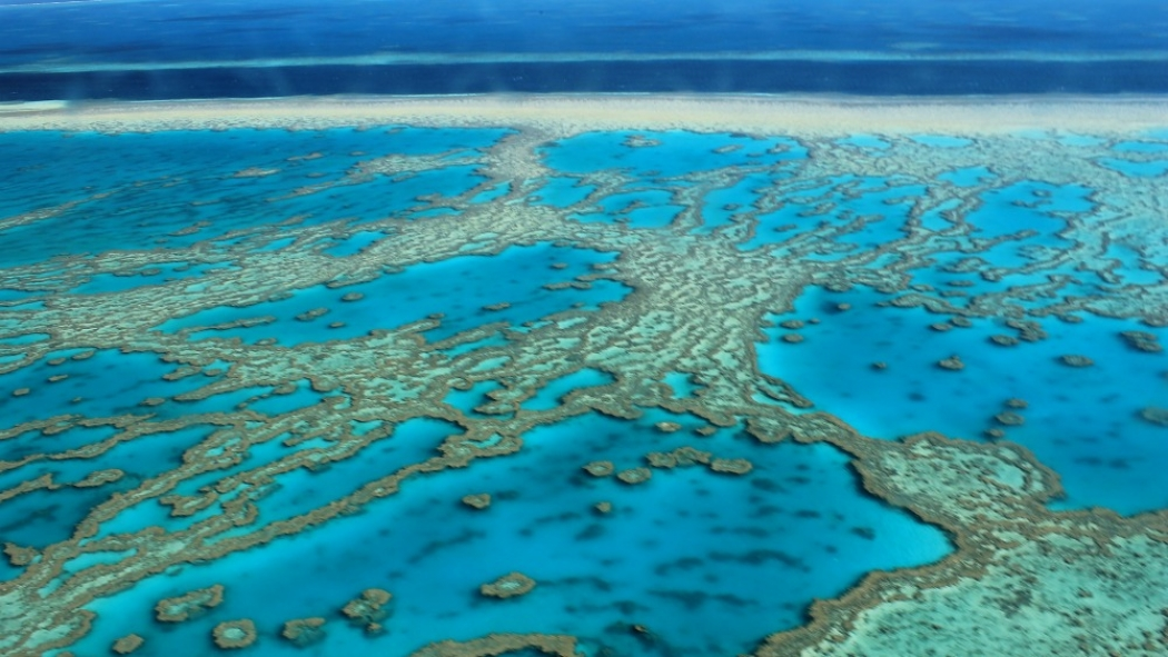 Bleak Picture Of Great Barrier Reef S Changing Chemistry