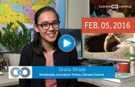 The Shum Show: Global Warming, Groundhog Style