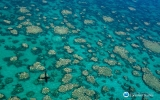Scientists Just Confirmed the Great Barrier Reef Bleached