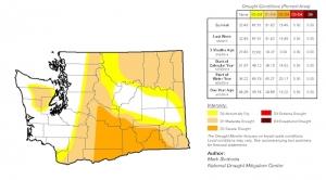 Washington's 'Wet Drought' Gets Worse