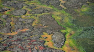 Add Nitrous Oxide to the List of Permafrost Melt Concerns