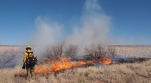 THE BURNING SOLUTION: Prescribed Burns Unevenly Applied Across U.S.