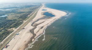 How the Dutch are building coastal protection for less — with nature's help