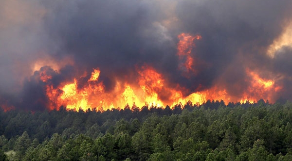 Interactive Wildfires Map Tracks the Blazes in West