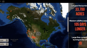 Everything You Need to Know About Wildfires in One Map