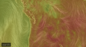 Soaring Temps in Pacific Northwest Shattered Records