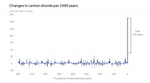 The Carbon Skyscraper