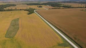 Drier heat waves threaten crops in Iowa