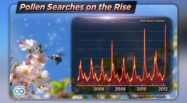 Pollen Searches are on the Rise