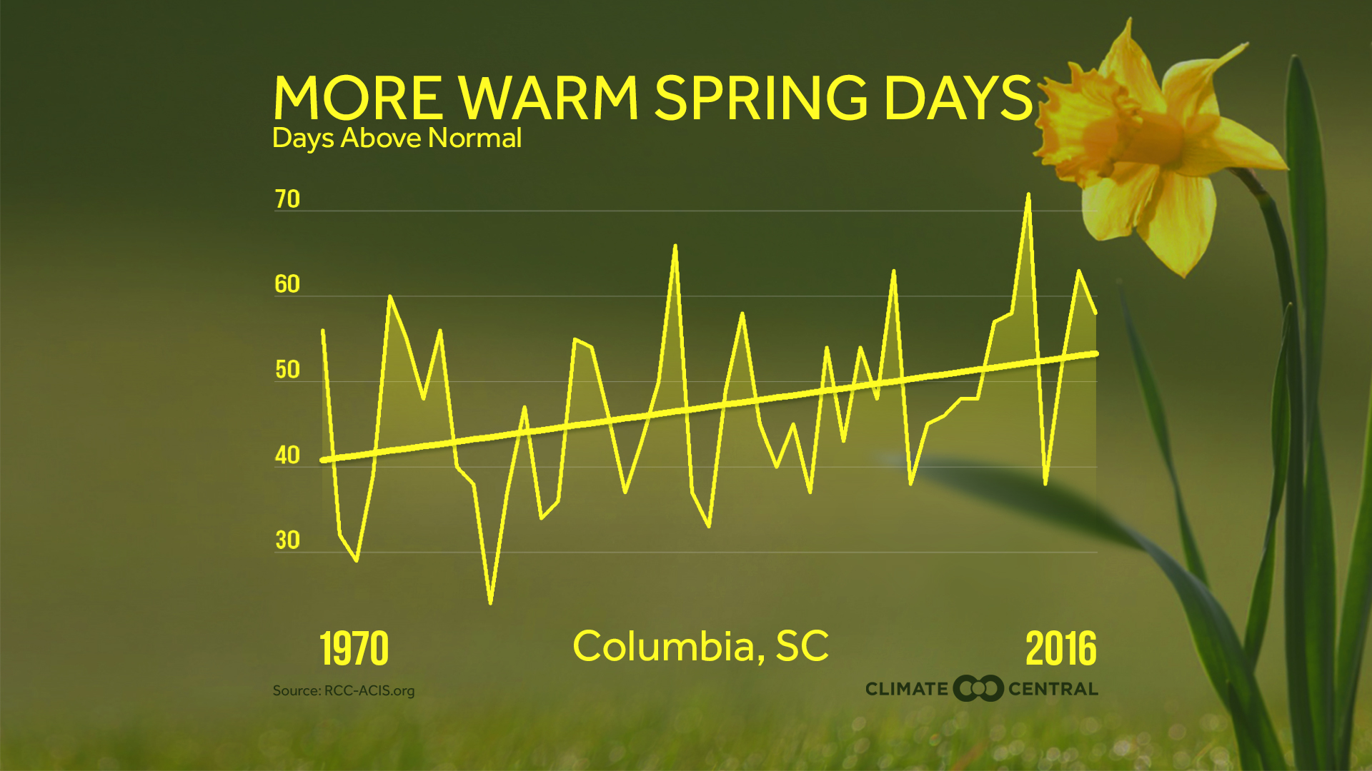 pollen count columbia sc