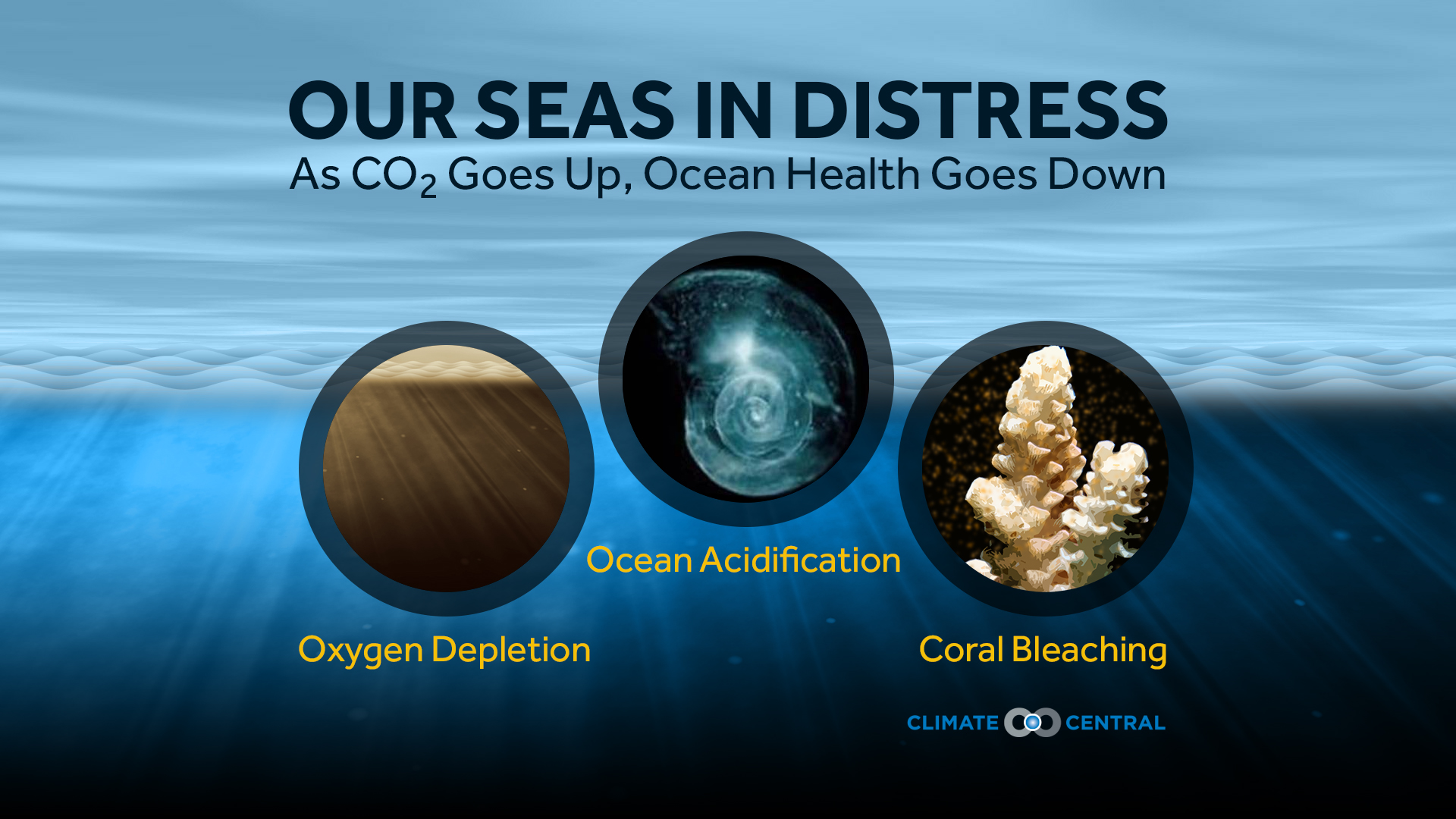 As CO2 Goes Up, Ocean Health Goes Down