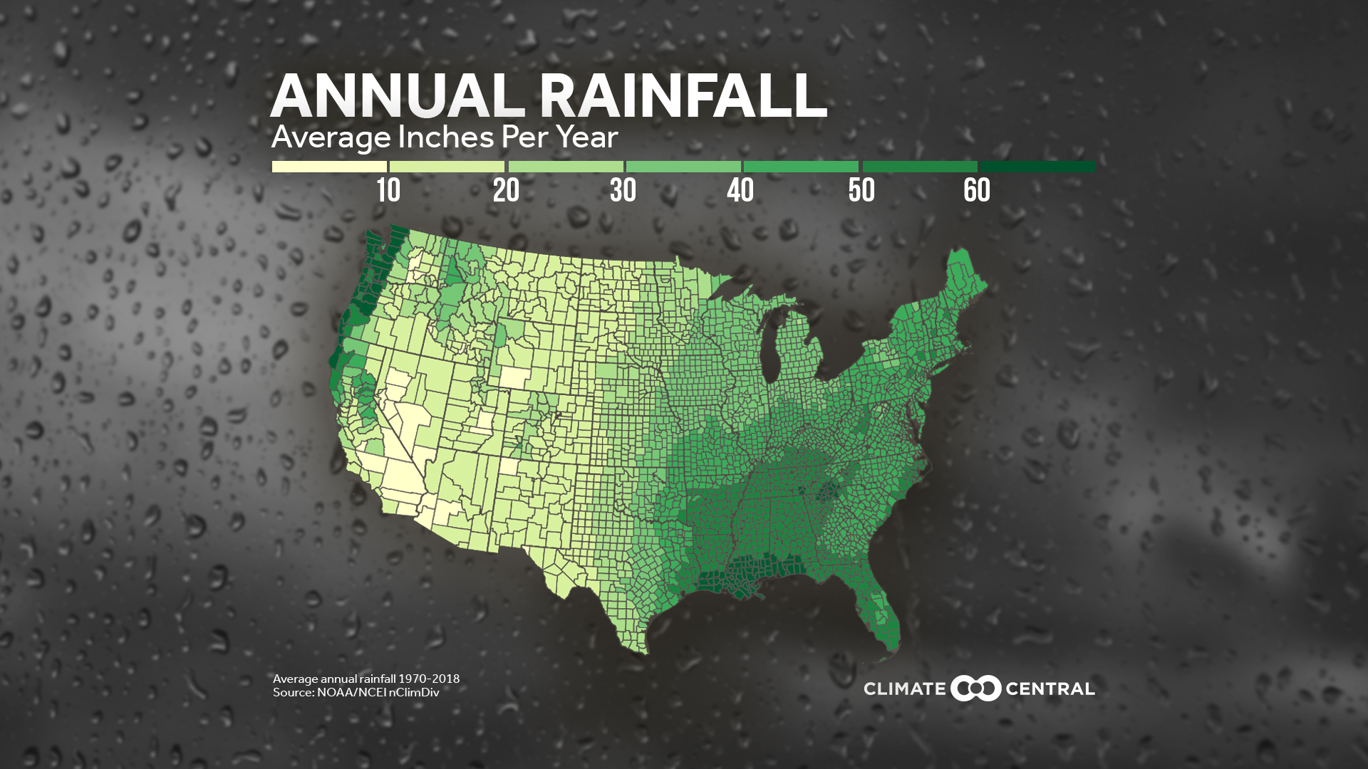 Trees and Annual Rainfall